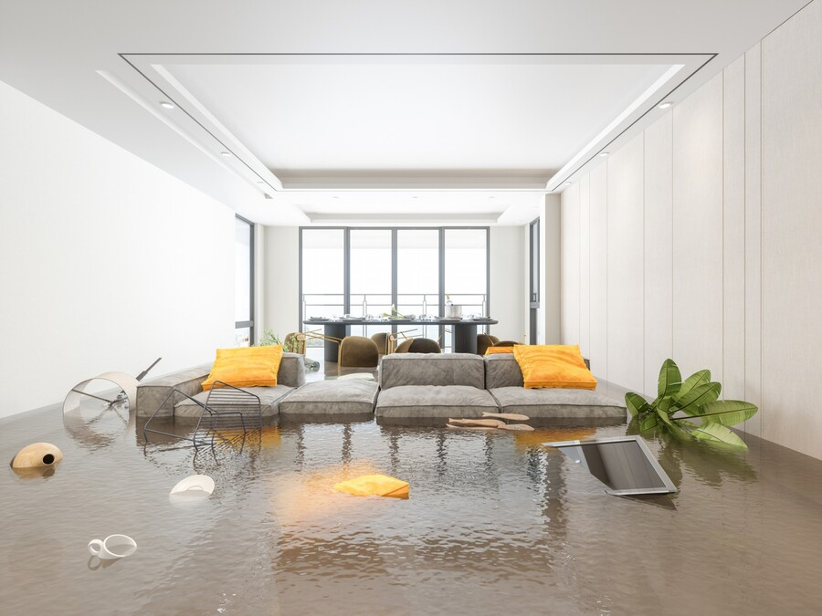 WAter Damage REstoration by SD Water Damage and Repairs